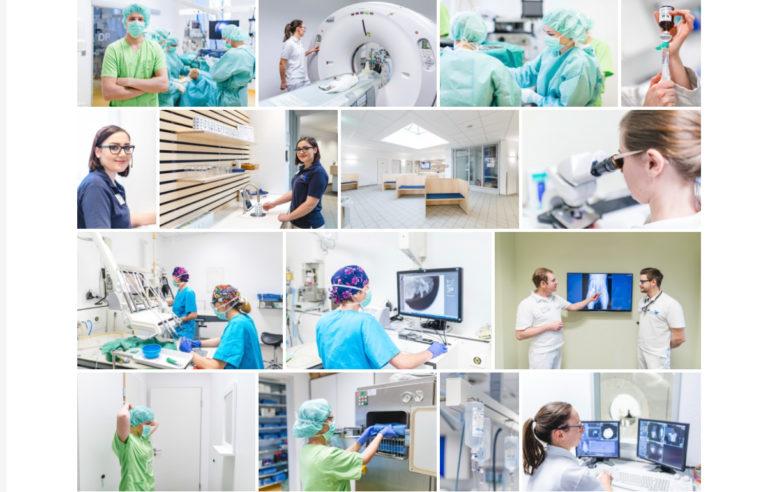 Tierklinik Ahlen Tierärztliche Klinik für Kleintiere Dr. med. vet. Gereon Viefhues